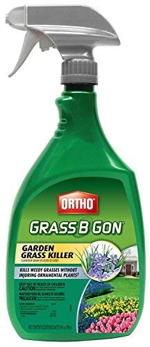 Ortho 0438580 Grass B Gon Garden Grass Killer Ready-to-Use, 24-Ounce (2)