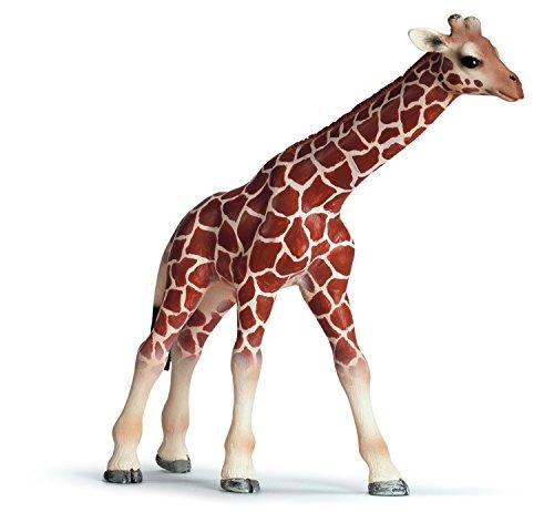 Schleich 14321  - Wild Life, Giraffenbaby