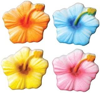 Best hibiscus sugar flowers Reviews