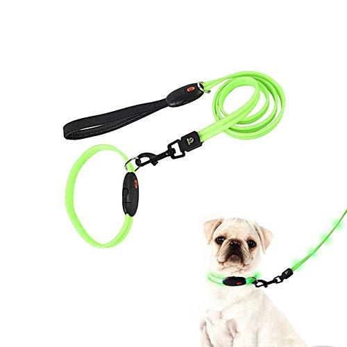 Corkcrd Hundeleine mit LED-Beleuchtung, wiederaufladbar, über USB aufladbar, für Hunde, grün, M