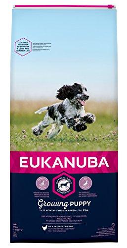 Eukanuba Puppy Trockenfutter für mittlere Welpen mit frischem Huhn, 15kg