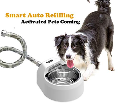 BARHOMO Automatic Dog Water Bowl Dispenser Indoor/Outdoor,Auto Refilling Cat Water Fountain,Battery Operated Large Pet Stainless Steel Dish Without...
