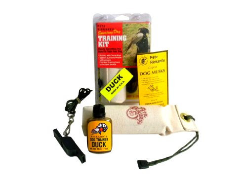 Hunting Dog Equipment