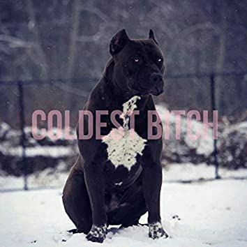 Coldest Bitch