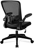 Office Chair, FelixKing Ergonomic Desk Chair with Adjustable Height and Lumbar Support Swivel Lumbar Support Desk...