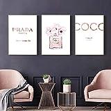 BIANWENSUAI Pintura de Pared de Flores de Perfume Rosa para el hogar, habitación de niñas, impresión en Lienzo, póster Decoraciónativo 51x71cmx3 sin Marco