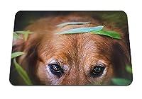 22cmx18cm マウスパッド (犬の顔の目) パターンカスタムの マウスパッド