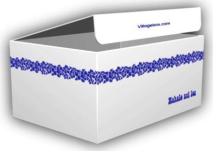 VillageBox デザインダンボール M ハワイアン