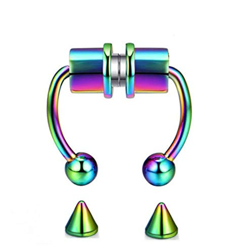 wgkgh Anillo de Nariz de Moda Reutilizable de 5 Colores, Anillos de Nariz magnéticos Falsos de aleación de Herradura, Anillo no perforante, Anillo de tabique magnético, aro de joyería Colorbrillante
