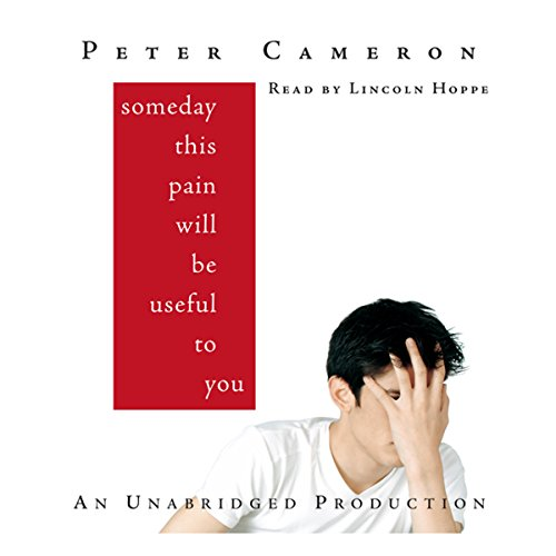 Someday This Pain Will Be Useful to You audiobook cover art