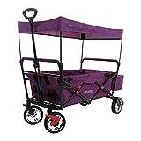 Fuxtec Carrello Pieghevole per Il Trasporto di Bambini con Tetto di Protezione UV FX-CT500 Viola