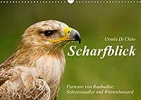 Scharfblick (Wandkalender 2021 DIN A3 quer): Schoene Portraits von Raubadler, Wuestenbussard und Schreiseeadler (Monatskalender, 14 Seiten )