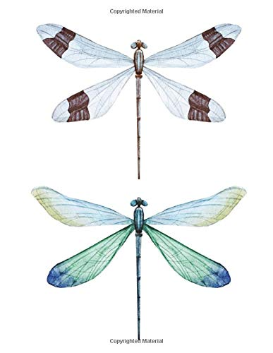 Notebook: with hand drawn dragonflies set, white paper