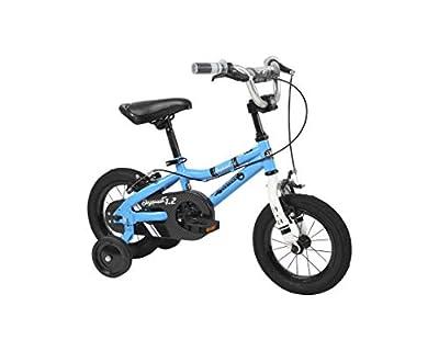 Duzy Customs Skyquest Bike from