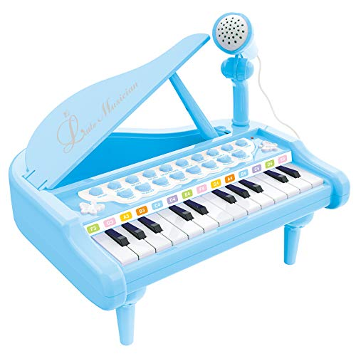 Reimotkon Baby Piano Keyboard Toy for Kids, Toy Piano Multi-Functional with Microphone for Toddlers Boys Girls Over 3 Years Old Gifts, 24 Keys-Blue (1505B)