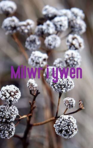 Milwr i ywen (Welsh Edition)