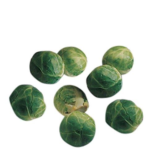 Burpee Catskill (Heirloom) Brussels Sprouts Seeds 100 seeds