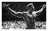 DPFRY Cuadros De Lienzo Arnold Schwarzenegger Poster Personajes De Arte Fitness Pictures Pared Sala...