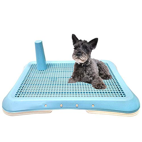 RTVZ Hond Toilet lade, Huisdier Toilet Potty Training Mat Indoor Outdoor Hond Toilet Grid Met Plastic Kolom (63x47.5x13cm)