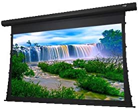 "EluneVision Reference AudioWeave 4K Tab-Tensioned Motorized Screen - Audio Transparent - 150"" (131"" x 74"") Viewable - 16:9"