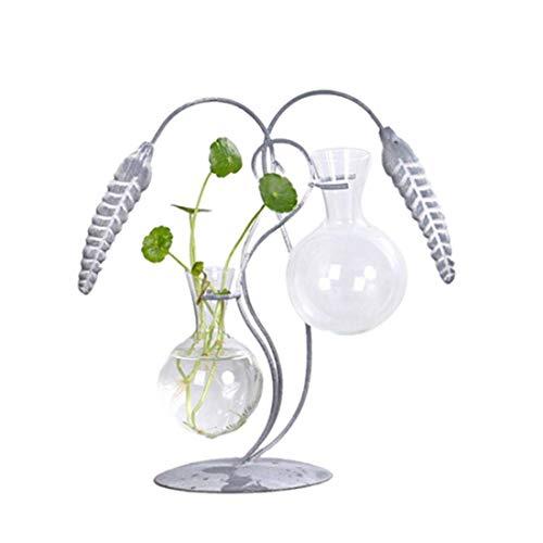 DXX-HR Botella de la flor de arroz de la vendimia de Spike creativo hidropónico pequeño florero de cristal fresco de las plantas verdes planta de agua recipiente de aire de escritorio de la decoración
