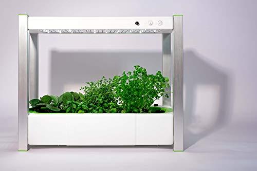 greenYou greenUnit 2.0 LED Mini Gewächshaus | Indoor Komplettset für Pflanzenzucht | Mit automatischer Wasserversorgung | Inkl. Samen für Basilikum, Minze, Oregano, Petersilie, Rucola & Schnittlauch