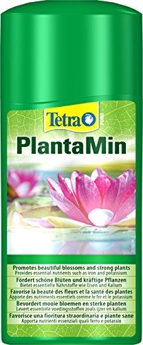 Tetra Pond PlantaMin Wasserpflanzen-Dünger (für ein gesundes üppiges Pflanzenwachstum im Gartenteich), 500 ml Flasche