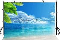 HD 7x5ft自然の美しさの背景青い空白い雲美しい海自然写真撮影の背景写真写真の背景小道具スタジオ屋内装飾LYGE1056