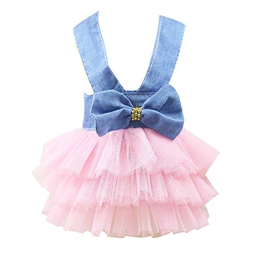 NIBESSER Teddy Chihuahua Hunde Prinzessin Kleid mit Schleife Gestreifte Hund Rock Prinzessin Spitze Kleidung Frühling Sommer Kostüm Bekleidung für Kleinen Hunde