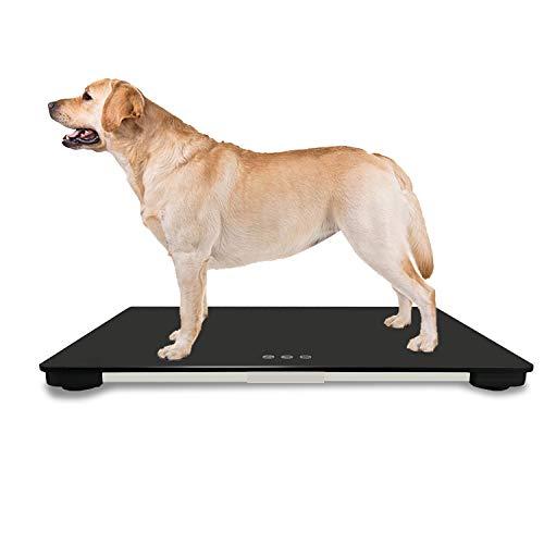 iCare-Pet Große Digitale Waage für große Hunde mit Einer Kapazität von 100 kg (± 10 g), Schaltfläche berühren, 65(L) x 45(W) cm