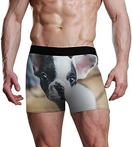 NaiiaN Calzoncillos Boxer para Hombres, niños, jóvenes, Ropa Interior, Cachorro Transpirable, Boston Terrier, Calzoncillos cómodos y Suaves