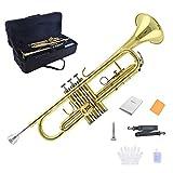 Best Brass Trumpets - TRUMPET - Apelila Bb Key Brass Gold Lacquer Review
