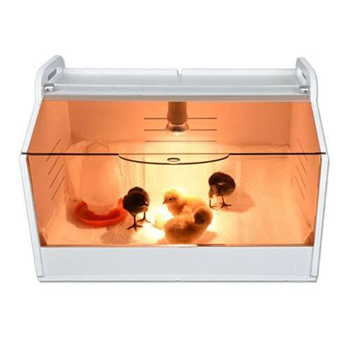 Brutinkubator Küken Kükenwärmebox Kükenhaus mit Thermometer und Lampe Küken Aufzucht Box Brutinkubator für Geflügel, Reptilien und Kleintiere Brutbox Inkubator 220V