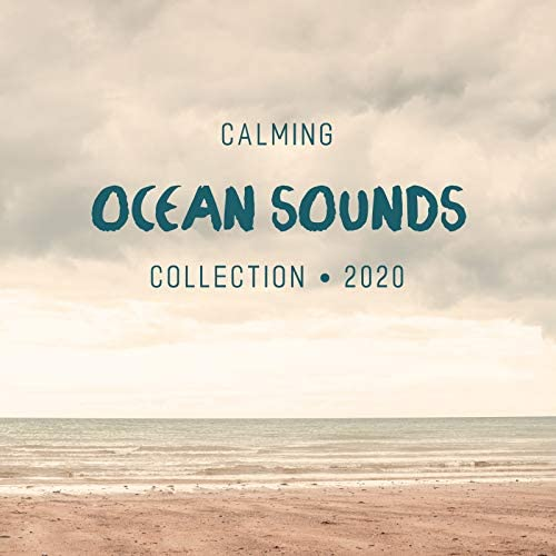 Ocean Sounds Collection & Nature Sound Collection
