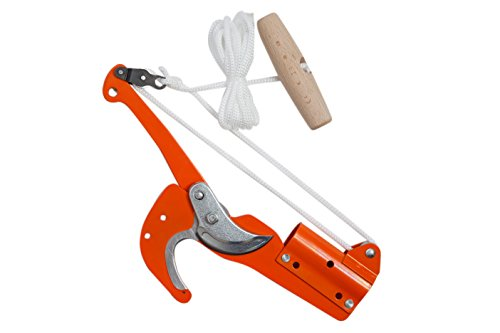 Falci Tools 247345-31 Tijera Cortarramas
