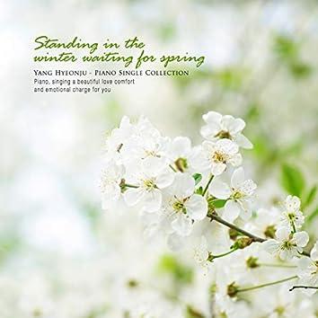 겨울에 서서 봄을 기다리다