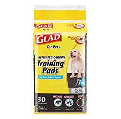 What are the best potty pads for dogs?