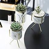 Keyzone - Vaso da fiori con supporto in metallo in marmo, ceramica, per piante grasse, cactus, stile nordico, casa, giardino, ufficio, 1 pezzo (oro L)