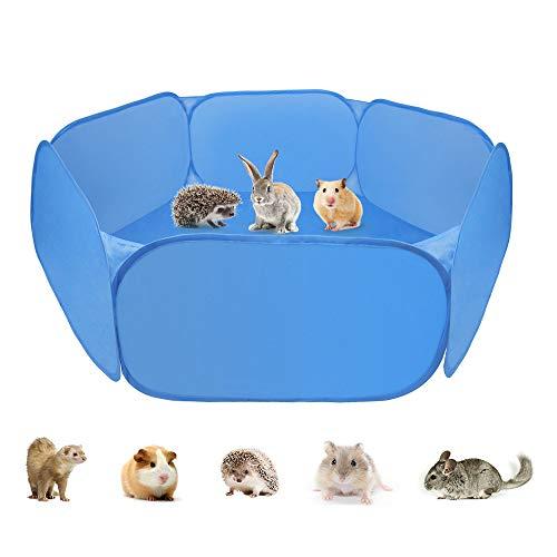 classifica gabbie animali