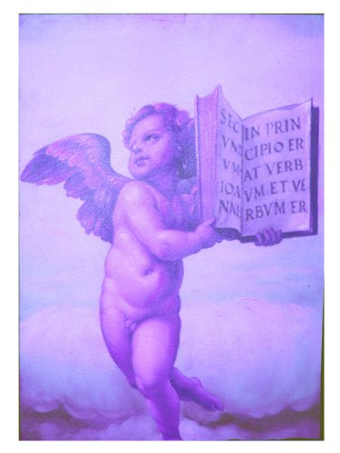 Brauns-Heitmann 60000.00 Quadro Angelo con Bibbia 50x70 cm