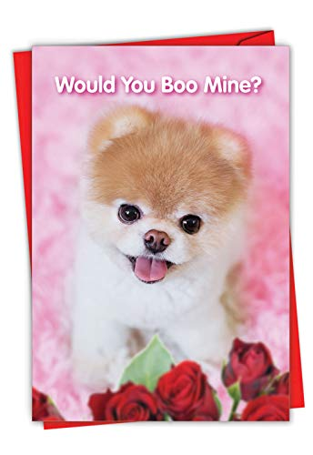 The Best Card Company - Happy Valentine's Day Greeting Card with Envelope - Loving, Heartfelt Notecard for Valentine (1 Card) - Boo My Valentine I C6754IVDG