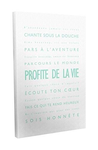 Feel Good Art Profite de la Vie Toile sur Cadre Mural de Style Moderne/Typographique Vert Menthe/Blanc 40 X 60 cm