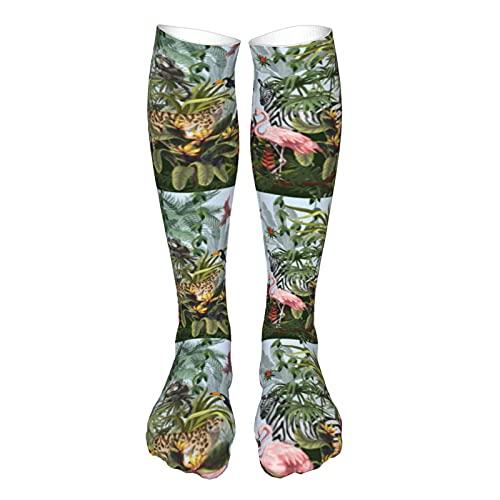Calcetines de compresión para mujer y hombre, paisaje de la selva con animales salvajes el mejor soporte para correr, deportes, senderismo, viajes en vuelo, circulación