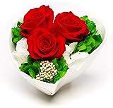 Rosen-Te-Amo, Elegante Bouquet di 3 Rose stabilizzate in Vaso di Ceramica per Fiori. Composizioni Fiori stabilizzati & Foliage 100% Naturale per Regalo Donna a San Valentino o arredo casa Natale