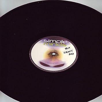 Spaceface (Tomcraft Remix)