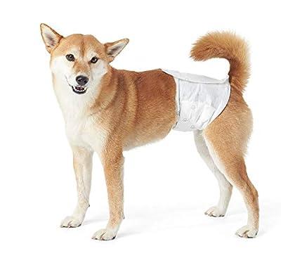 AmazonBasics Male Dog Wrap