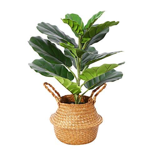 Planta Artificial Higuera Hoja de Violín Hawaiian Tropic Palma Plantas Artificial Altura...