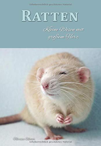 Ratten: Kleine Wesen mit großem Herz