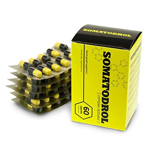 SOMATODROL | GRTH-Faktor + TST-Faktor + Fettreduktionsmatrix | Muskelmassenwachstum | Testosteron-Booster | Hormonunterstützung für Männer (60 Kapseln = 1 Karton)