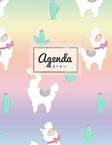 Agenda 2019: Semanal Diario Organizador Calendario - Rainbow Alpaca Y Cactus